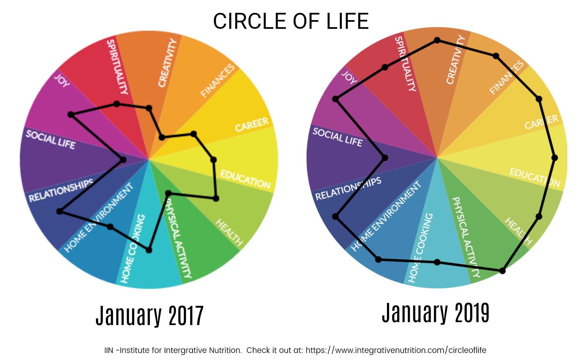 circle of life jan 2017 - jan 2019